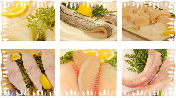 fish_products_made_by_fish_processing_machines